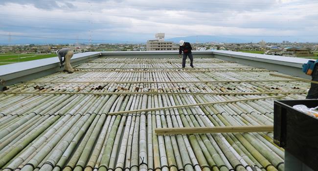 南陽高校に伐採した竹を敷き詰め1