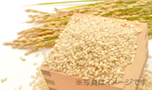 竹かぐや玄米